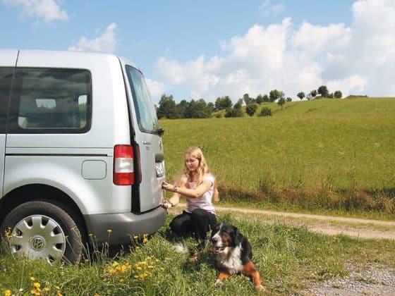 AIRSAFE Heckklappen-Aufsteller für VW Caddy 4/3, VW T6/T5 ohne Heckklappen-Zuziehhilfe und alle VW-T4